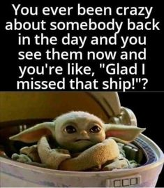 Yoda Meme, Yoda Funny, Stupid Funny, Funny Cute, Funny Stuff, Star Trek Quotes, Funny Relatable Memes, Hilarious Quotes, Star Wars Pictures
