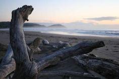 Wainui Beach in Gisborne im Morgengrauen