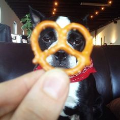 I'd do this with a heart instead of pretzel