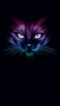Iphone Wallpaper Cat, Cute Wallpaper Backgrounds, Baby Animals Super Cute, Cute Animals, Neon Cat, Cat Background, Black Cat Art, Cat Watch, Cat Colors
