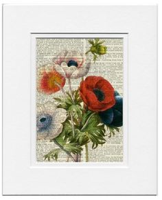 vintage anemone artwork - printed on old page from dictionary. $12.00, via Etsy.