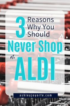 Discover why you should never shop at Aldi! There are plenty of reasons not to shop at Aldi, especially if you dislike staying on a grocery budget! Aldi Shopping, Shopping Tips, Saving Time, Saving Money, Homemade Toilet Bowl Cleaner, Budget Organization, Food To Go, Frugal Living Tips, Time Shop