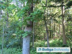 Torbensvej 5, 4550 Asnæs - Næsdal Plantage (nær Lammefjorden) #asnæs #fritidshus #boligsalg #selvsalg