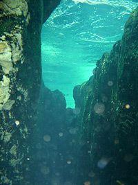 An strange underwater tunnel is found in Florida!