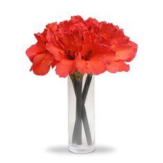 Tecido Vidro Arranjo de Flores Artificiais Amarilis no Vidro Clindrico 35cm Altura