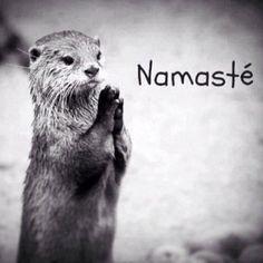 The Anjali Mudra. A palavra Mudrá nos é apresentada com vários significados, porém, o mais conhecido é gesto. São gesticulações realizadas com as mãos, pés, língua, olhos e com todo o corpo. São também apresentados como selos ou símbolos