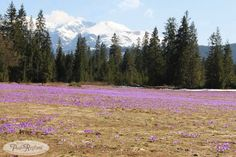 Tatry wiosna w górach - 1 kwiecień 2013 roku