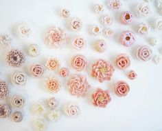 #flowercake #flower #buttercream #buttercreamcake #cupcake #cake #buttercake #dessert #korea #koreanflowercake #instafood #koreanstyle #cakedecorating #patisserie #art #instagram #foodstagram #flowerarrangement #flowers #花 #pink #seoul