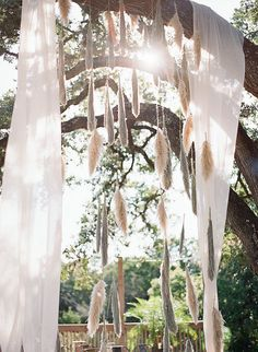 Gorgeous Pampas Grass Ideas for your Wedding | Bridal Musings Wedding Blog 4