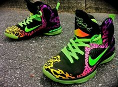 Nike LeBron 9 Leopracheebra by District Customs