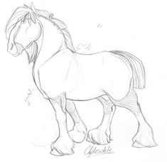 Clydesdale sketch by taa on DeviantArt Horse Drawings, Animal Drawings, Cute Drawings, Animal Sketches, Drawing Sketches, Drawing Art, Horse Sketch, Horse Anatomy, Clydesdale Horses