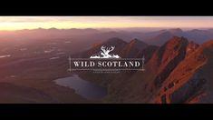Wild Scotland - YouTube