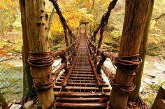 Tokushima: Iya-keikoku valley, a suspension bridge 徳島: 祖谷渓谷, 奥祖谷, かずら橋 #japan #sightseeing