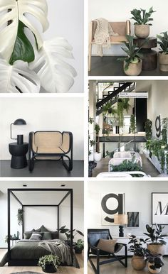 My Fave Instagram Accounts for Home Decor Inspo Tiny Apartments, Minimal Home, Furniture Companies, Bohemian Decor, Home Collections, Home Decor Inspiration, Scandinavian Design, Minimalist Design, New Homes