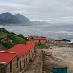 The old fishing harbour, Hermanus, Western Cape, South Africa. Clifton Beach, South Afrika, Holiday Places, Out Of Africa, Places Of Interest, Staycation, Places To See, Tourism, Beautiful Places