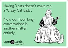 Having 3 cats doesn't make me a 'Crazy Cat Lady'. Now our hour long conversations is another matter entirely. (pop-Eggs' eCard Creations: ~JB http://pinterest.com/popeggs/)