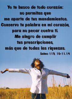 Yo te busco de todo corazón: no permitas que me aparte de tus mandamientos. Conservo tu palabra en mi corazón, para no pecar contra ti. Me alegro de cumplir tus prescripciones, más que de todas las riquezas. (Salmo 119, 10-11.14)