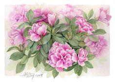 Vintage Get Well card Watercolor Art Kids, Watercolor Design, Watercolor Flowers, Art Floral, Floral Prints, Rose Prints, Botanical Flowers, Botanical Art, Pink Flowers