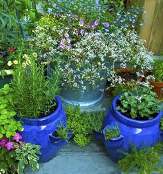 garden in pots Growing herbs is easy(ish) even if you are beginner. Heres how to get started.: The Benefits of Growing Herbs in PotsPlanning Your Herb ContainerChoosing a Container for Your HerbsPlanting Your HerbsHarvesting Herbs Herb Garden Design, Diy Garden, Garden Pots, Vegetable Garden, Garden Landscaping, Herbs Garden, Potted Herb Gardens, Shade Garden, Vegetable Boxes
