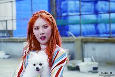 #kim hyuna #triple h #HyunA #365fresh