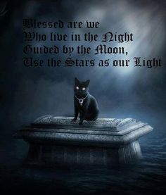 .Blessed are we Who live in the night guided by the moon      the stars as our light