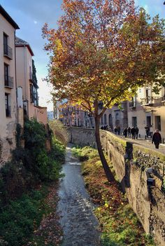Carrera del Darro - one of the oldest streets in Granada, Spain Places Around The World, Around The Worlds, Spain Holidays, Seville Spain, Cadiz, Spain And Portugal, Spain Travel, Malaga, Beautiful Places