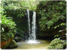 Parque Nacional do Divisor - Acre, Brasil