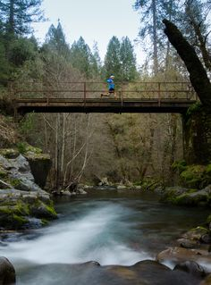A runner crosses El Dorado Creek on the Western States 100 course. Photo: Michigan Bluff Photography