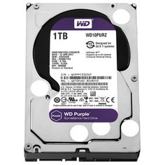 WD Purple Surveillance Hard Disk Drive - 5400 RPM Class SATA 6 Gb/s Cache Inch - >>> Be sure to check out this awesome product. (This is an affiliate link) Pc Hard Drive, Hard Disk Drive, Usb, Disco Duro, Surveillance System, Computer Hardware, Cool Things To Buy, Stuff To Buy, Westerns