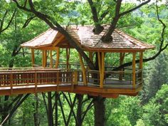 Invite your friends - treehouse party!