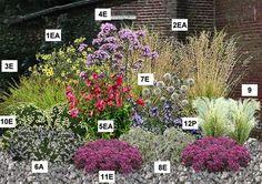Massif plein soleil - Présentation                                                                                                                                                     Plus Lawn And Garden, Garden Art, Garden Plants, Garden Design, Landscaping Plants, Outdoor Plants, Interior Exterior, Gardening For Beginners, Garden Supplies