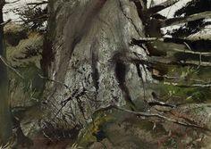 Andrew Wyeth - Cat spruce