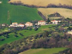 Cingoli, Marche, Italy - Countryside in spring #4 by Gianni Del Bufalo