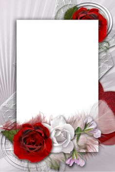 Transparent Romantic Frame with White and Red Rose Birthday Photo Frame, Birthday Frames, Page Borders Design, Border Design, Framed Wallpaper, Rose Wallpaper, Rose Frame, Flower Frame, Frame Background