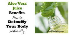 Aloe Vera Juice Benefits: How To Detoxify Your Body Naturally