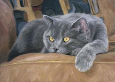 Cat Print featuring the painting Comfortable by Lucie Bilodeau