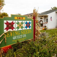 A quilting trio cultivates a homey haven where camaraderie and creativity flourish. Quilt Display, Textile Artists, Pinwheels, Machine Quilting, Flower Designs, Quilt Patterns, Sewing Crafts, Crafts For Kids, Seeds