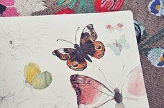 elemency: mariposas porción oanabefort en Flickr.