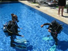 All4diving Indonesia All4dive Profile Pinterest