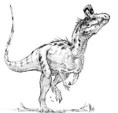 A #Cryolophosaurus sketch by aka dustdevil (Alain Beneteau). #dinosuars