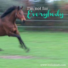 What? It's true.  This is one of the most important lessons to learn especially as a coach or trainer.  You are not for everybody.  Your horse?  Not for everybody.  Your Saddle?  Not for everybody. (that's why there are so many different kinds!) Have you ever made a snack or dinner or a dip for someone and you rave about it and they try it and hate it? WHAT is WRONG with them??? Answer - Nothing.  Different tastes different strokes different vibes and forms of communication work for…