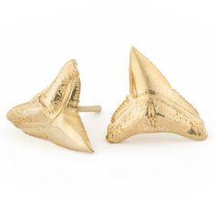 Tideline Studs - Shark Tooth