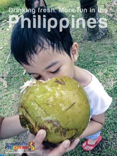 DRINKING FRESH. More FUN in the Philippines! Philippines Tourism, Philippines Culture, Don Papa, Islamic Society, Tourism Department, Filipiniana, Philippine News, Filipino Food, Over The Rainbow