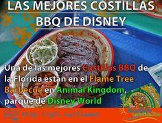 Cuál es la mejor comida de Walt Disney World? Pues entre tantas opciones muchas son excelentes pero una de las #MEJORES está en el Animal Kingdom en el Flame Tree Barbecue dónde las costillas simplemente son deliciosas ==> http://g2l.us/flamet