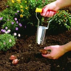 Quick and Easy bulb planting begins with the WOLF-Garten Bulb Planter - now $9.97 http://www.bluestonegarden.com/wolf-garten-bulb-planter.html