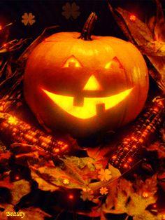 Gif Animé Halloween