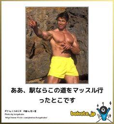 写真で一言ボケるWebサービス「ボケて(bokete)」 | Select * Aikido, Funny Photos, Geek Stuff, Jokes, Japanese, Humor, Happy, Pictures, Fanny Pics