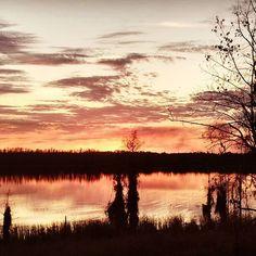 A last look at the sunset.  #sunsets #sunsetinflorida #lakelouisa #lakelouisastatepark #statepark #optoutdoors #optoutside #adventurecycling