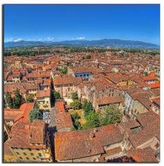 Lucca, Italy by amber