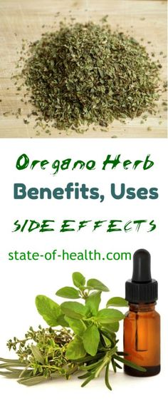 oregano-herb-benefits-side-effects